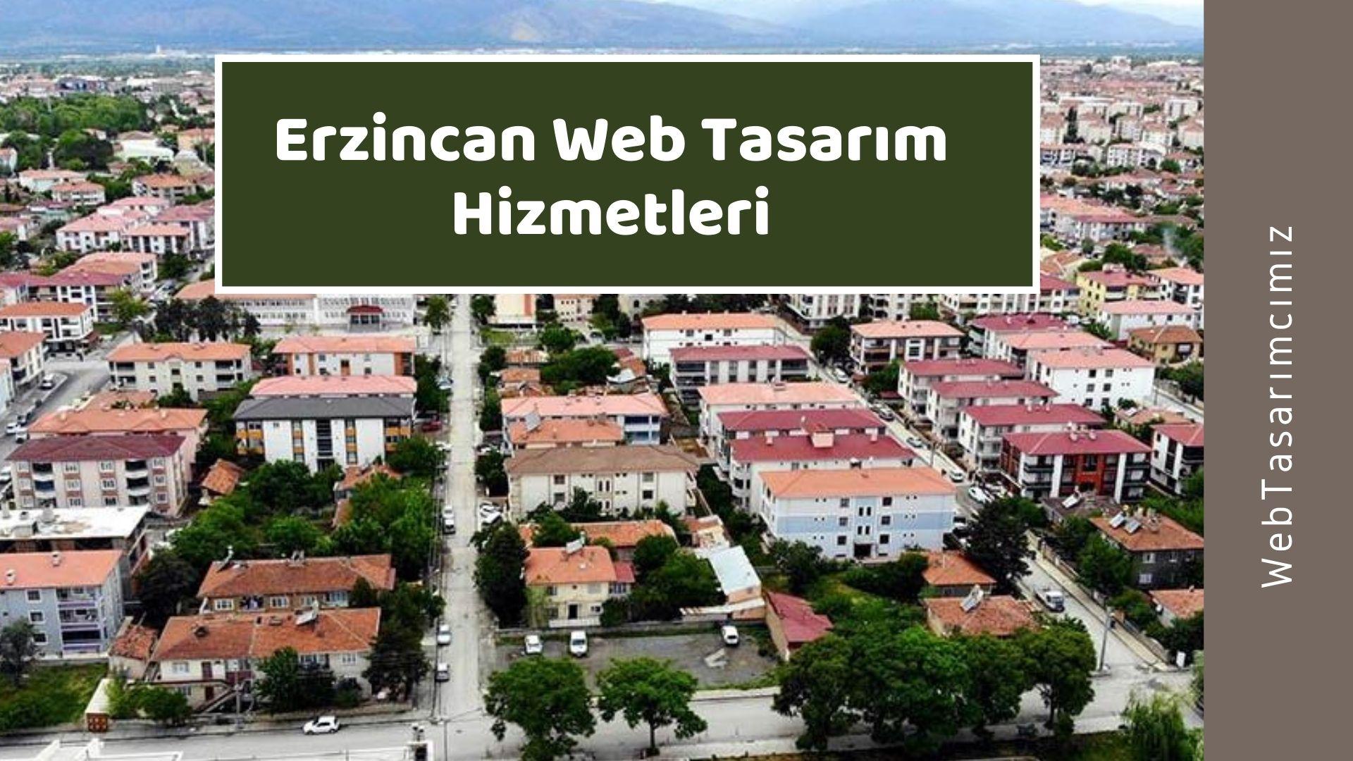 Erzincan Web Tasarım Hizmetleri